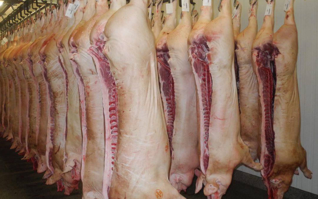 EU vr. 2030: srovnatelná produkce ispotřeba masa (68,7 kg/osobu arok vekvivalentu maloobchodní váhy)