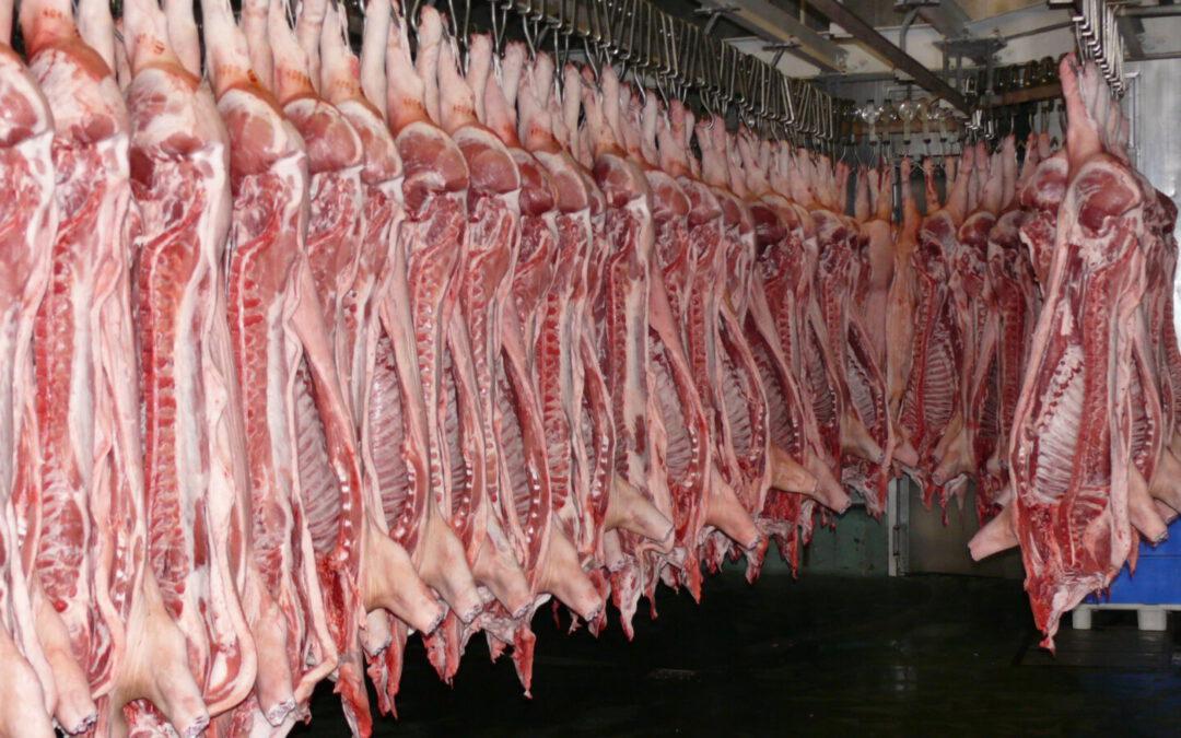Produkce aspotřeba masa vregionech světa vroce 2018